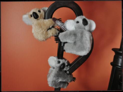 bianchi-koala-Bianchi Cup