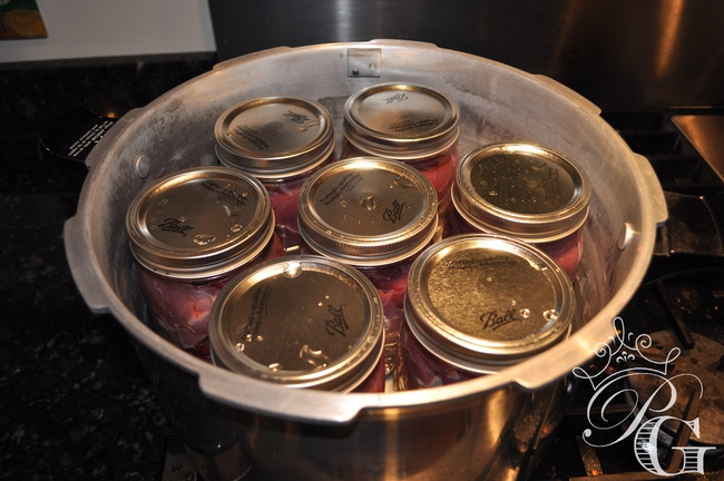 canned deer meat recipes